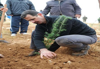 Assad-tree-15-2-15-1